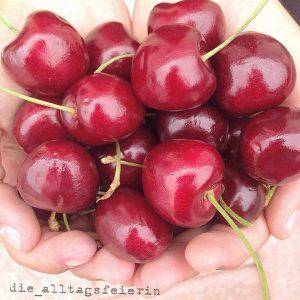 So langsam verzieht sich der mimimimimiiiiiii Mittwoch, ist nur noch das eine Mi da. * Unser mini (oh schon wieder hat sich ein Mi eingeschlichen ) Kirschbäumchen ist dezent errötet und jetzt gibt's lecker, selbstgeerntete Kirschen . * Ich wünsche euch allen einen schönen und ausgeglichen Abend und freu mich euch morgen wieder zu lesen, bis denne . #kirschen #cherries #süßkirschen #fruits #selbstgeerntet #lovemygarden #healthy #healthygood #healthyfood #sommer #summer #food #foodgasm #cleaneating # #foodstagram #instafood #eatbalanced #foodblogger #diealltagsfeierin #foodphotography #alltagsfeierei #druckrauslebensfreuderein #entschleunigen #monkine #foodgasm