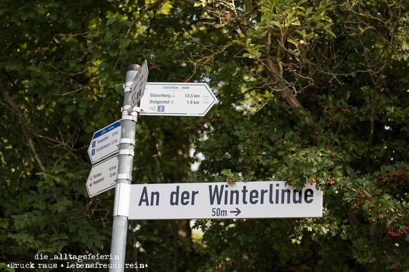 Hochrhöner, Wanderlust, wandern, Tann Rhön, Winderlinde