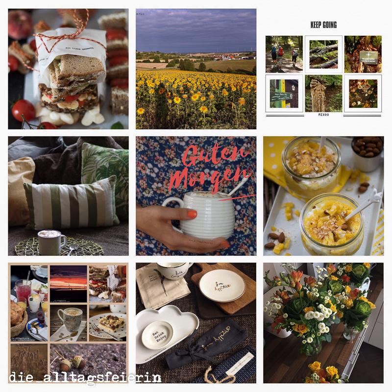 Monatsrückblick August 17, Wanderlust, Shoppinghaul, Deko, Sonnenblumenfeld, Fotografie
