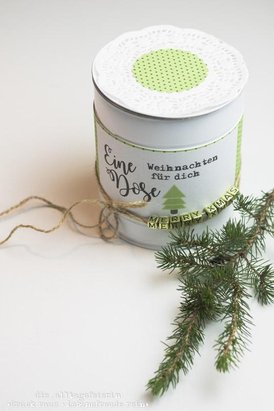Konservendose, Geschenke aus der Konservendose, schoene Verpackung, Upcycling, Dose, Scrapbooking, Geschenke schoen verpackt, Apotal, gruen, Weihnachten, Xmas