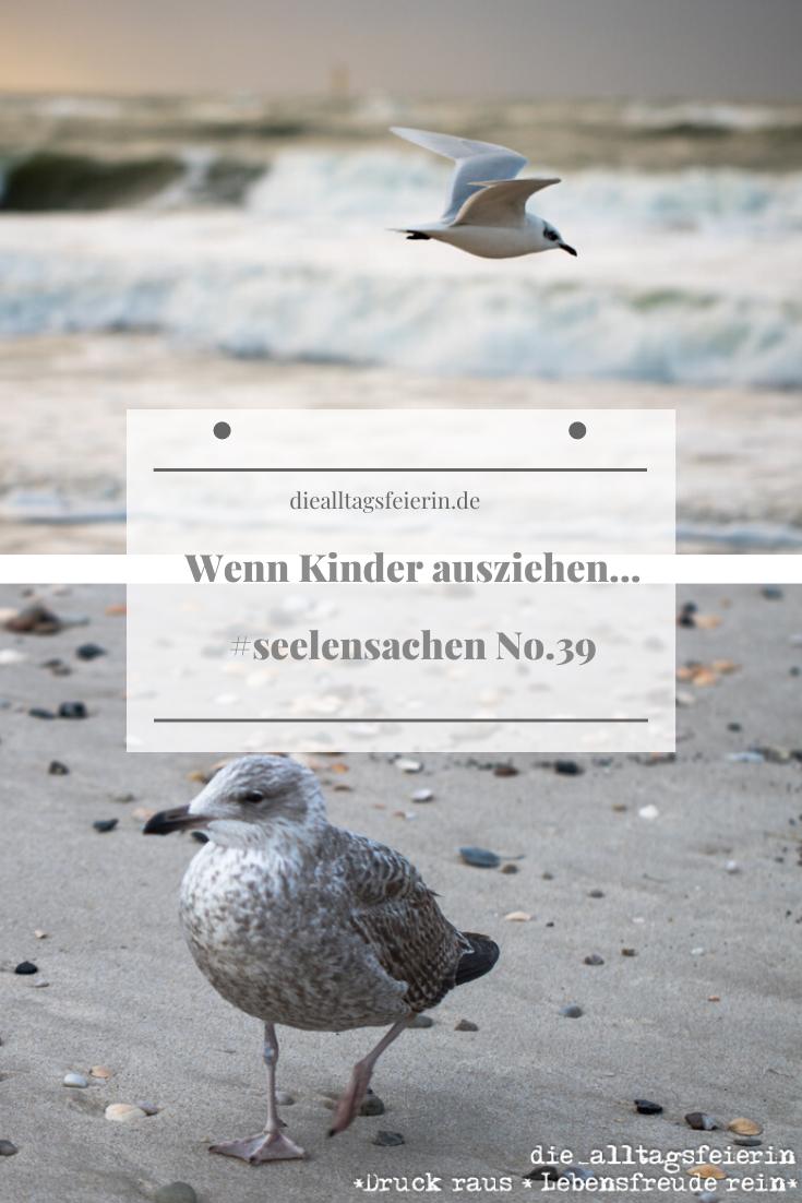 Wenn Kinder ausziehen, Seelensachen No. 39, flügge werden, Emty Nest Syndrom, diealltagsfeierin.de, Möwe als Symbol für das Flügge werden