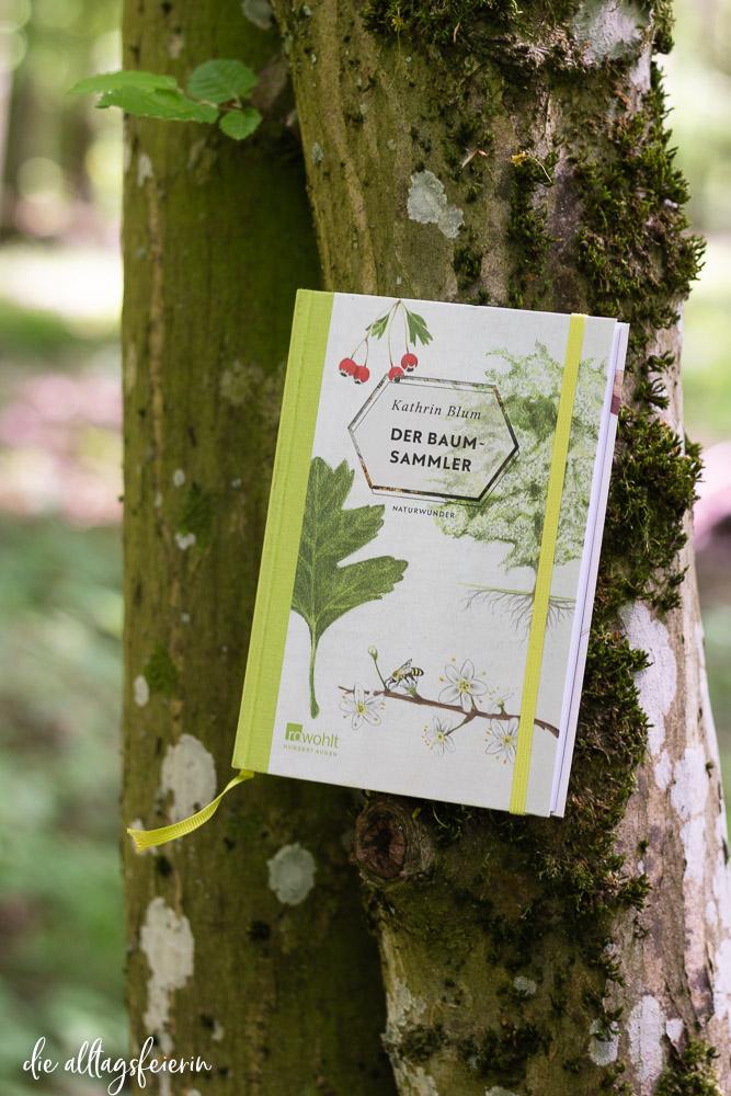 """Wildnispädagogin und Autorin Kathrin Blum ,Rezension Buch """"Der Baumsammler"""" vom Rowohlt Hundert Augen Verlag"""