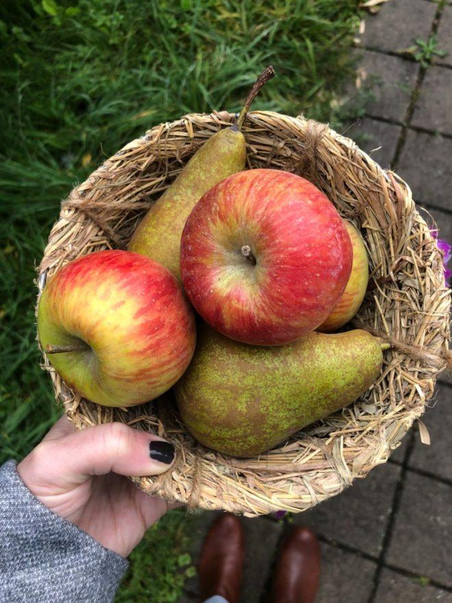ToLove Bucket-Liste: Äpfel und Birnen, Ideen für einen festlichen Herbst. Christina von meinpusteblumengarten.de