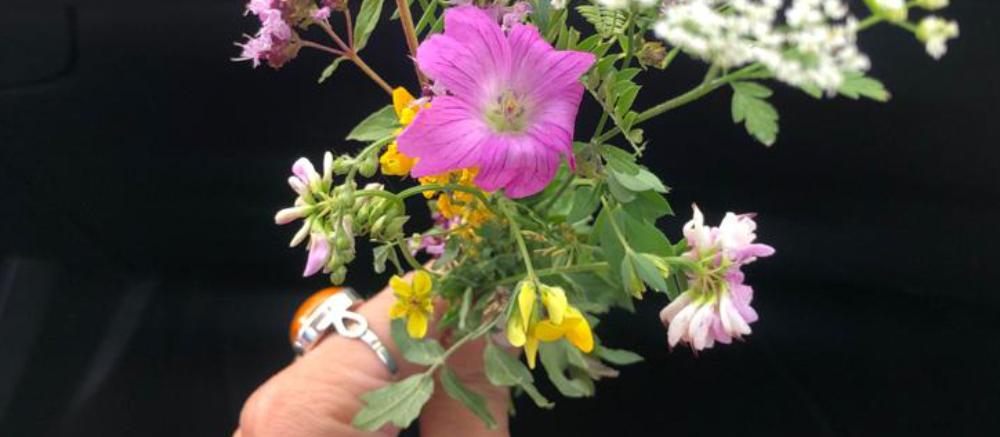 Vanessa von silentmindfullness - Räuchern, Blumen