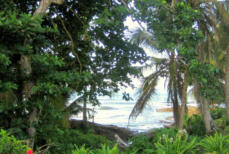 Der Strand Cahuita in Costa Rica
