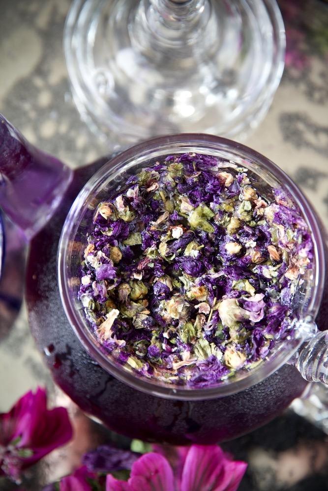 Malvenblüten-Ansatz Susan von Labsalliebe.com