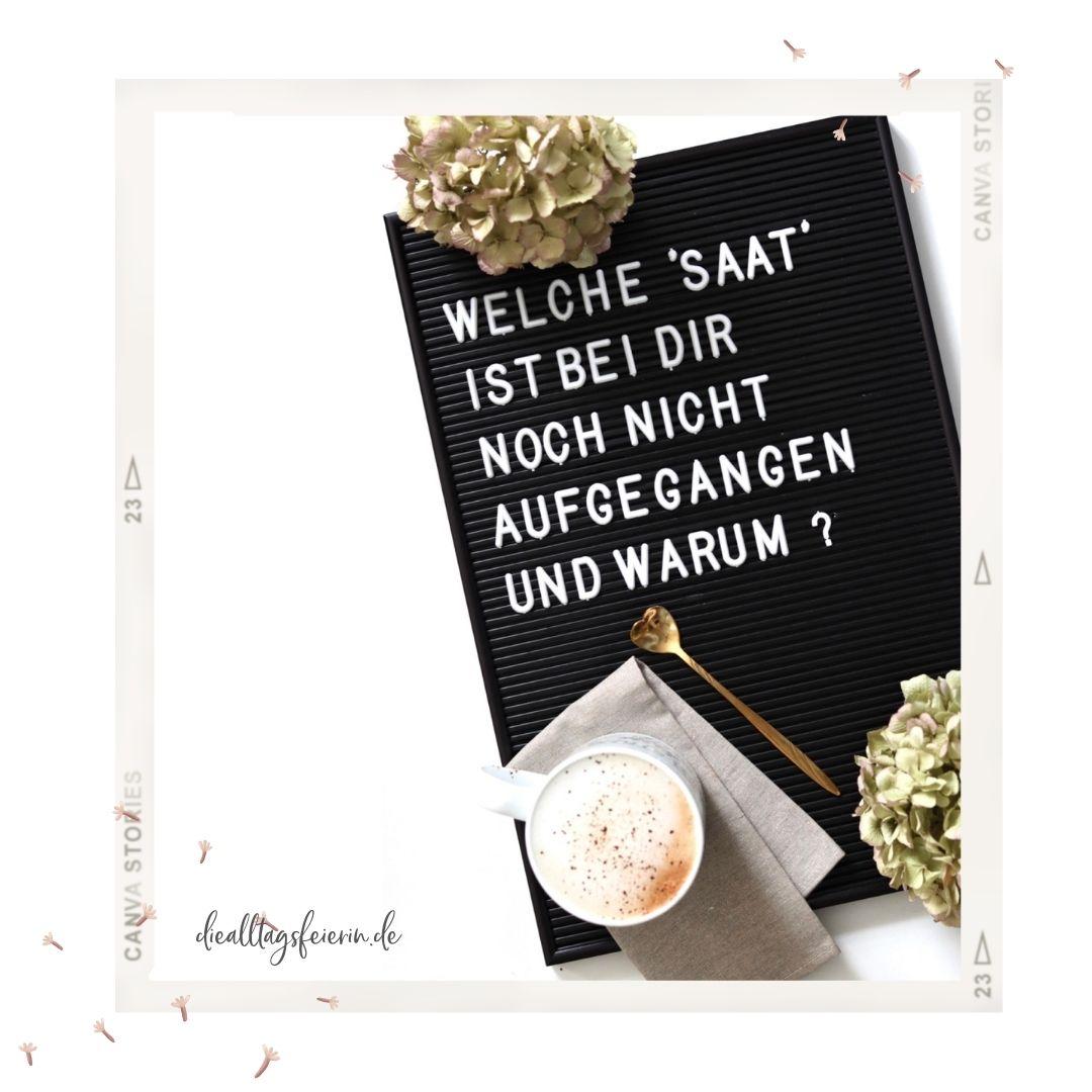 Wochenrückblick No 37-2021, das Sonntagsmagazin auf diealltagsfeierin.de